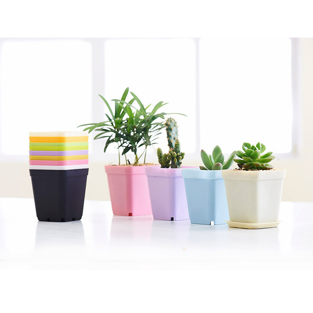 Whole 6pcs Plastic Flower Pots Nursery Succulents Small Plant Pot Mini Planters 70mm Home Garden
