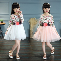 2017 Korean Princess Children Autumn Cotton Girls Skirt In Suihua Long Sleeved Dress Printing