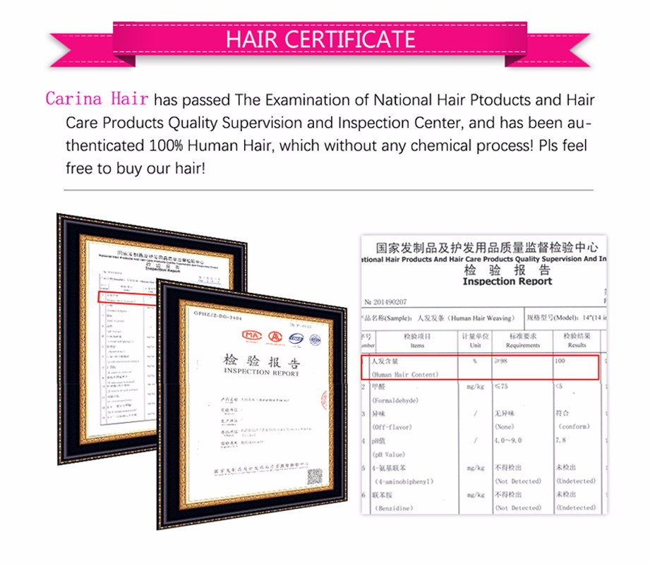 Carina Brazilian Body Wave 13X6 Lace Front Human Hair Wigs PrePlucked Honey Blonde Remy Ombre Color Glueless Wig