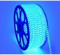 5M5050 300 SMD IP65 Waterproof LED strip,220V flexible 60led/m LED tape, white/warm white/blue/green/red/yellow/RGB outdoor Led