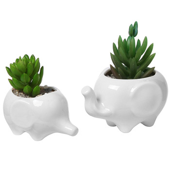Venda Quente Conjunto De 2 Bonito Do Elefante Branco Vaso De Flores De Cerâmica Com Bandeja Para Suculentas Cactos Mini Pote Plantador Casa Jardim D