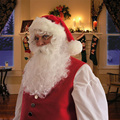 White Santa Beard and Wig Adult Mens Christmas Party Cosplay Hair Wig