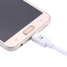 LED Light Micro USB Charger