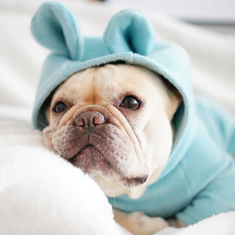 [MPK Store] NMF Serie Orso Orecchie Hoodies Del Cane, Vestiti del gatto, cane e Gatto Maglione Bulldog Francese Vestiti, Pet Con Cappuccio 7 Sizes