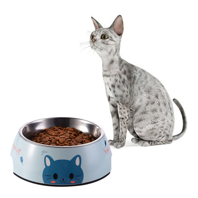 Image result for cats Bowls