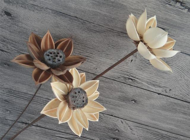 5pcs Natural Dried Whitebrown Lotus Flowers With Iron Wire For