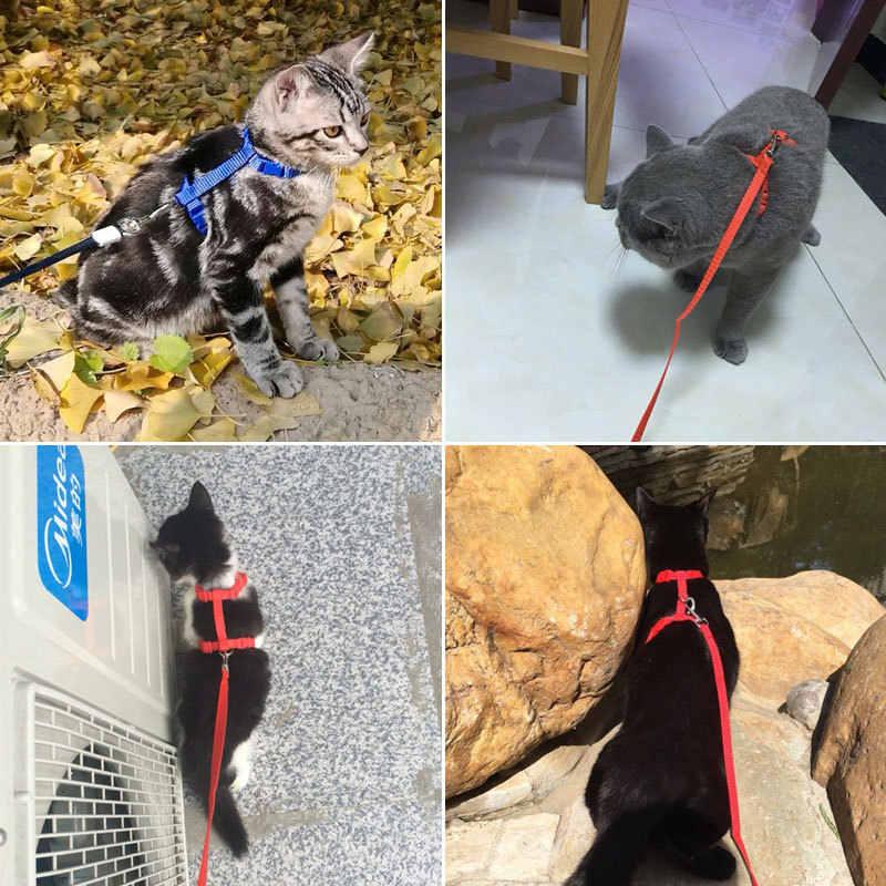 חתול מחמד לרתום & רצועה מתכווננת חתול לרתום Breakaway ניילון רצועת צווארון עם מובילה עבור חתלתול גור כלבים קטנים הליכה