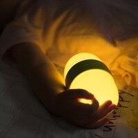 Shaking Led Night Light Timing Tumbler AC220V USB Charge Desk Lamp Night For Baby Children Gift