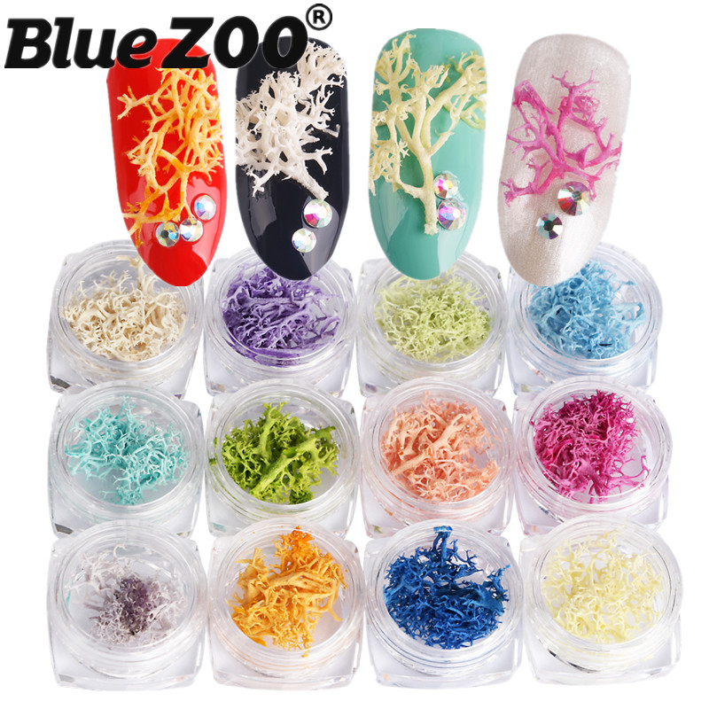 BlueZOO 12 Colors Nature Coral 3D Nail Art Seaweed Dry Preserved Flowers Tips Decoration Nail DIY Manicure Accessories diy professional nature toe nail tips white 500 pcs