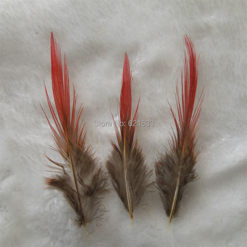 100Pcs/lot 5-9cm pheasant feathers,golden feathers, red tipped, striped feather, lot.