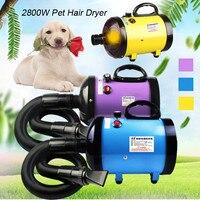 2800 Вт низкая шум фен для домашних питомцев Груминг Собак и котов сушилка нагреватель регулируемый воздуходувы 220 В ~ 240 высокое качество