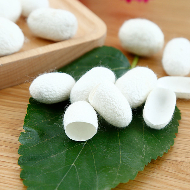 30PCS Organic Silkworm Balls Purifying Whitening Exfoliating Scrub Blackhead Acne Remover Natural Silk Cocoons Facial Skin Care 1