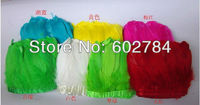 Free Shipping 20meters assorted color geese feather trim / trimming / fringe dyed goose feather ribbon Duck feather fringe
