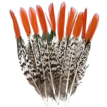 Natural Lady Amherst Pheasant Feathers Feathers for Crafts 5-30cm2-12 Feathers Jewelry Making Wedding Carnival Plumes Plumas