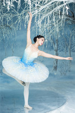 Professional ballet  tutu pancake classical Princess ombre dyed pale blue Florina in The Blue Bird
