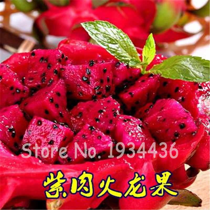 Красный Драконий фрукт питайя вкусные зеленые тропические фрукты Граден бонсай дерево кактус Suculentas Plantas Vivas Seedsflower 200 шт