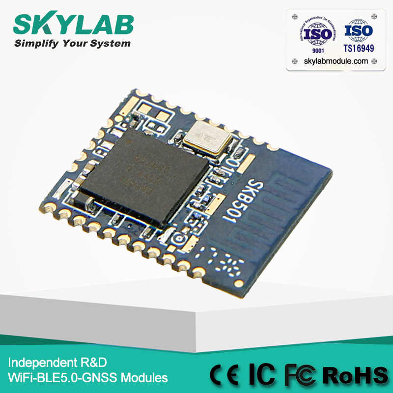 Detail Feedback Questions about SKYLAB Long Range BLE5 0