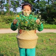 S / M / L / XL / XXL käsitööna valmistatud rotangist kõhtu õitsemise lillekorvi kott käepide lasteaiapottide istutaja Straw korraldaja vaas aed sisekujundus