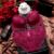 2017 Venda Quente de Luxo 1/2 Xícara Marca Sexy Plus Size Intimates Push Up Bra Set Conjunto de Roupa Interior Floral Bordados Rendas Mulheres Sutiã Calcinha