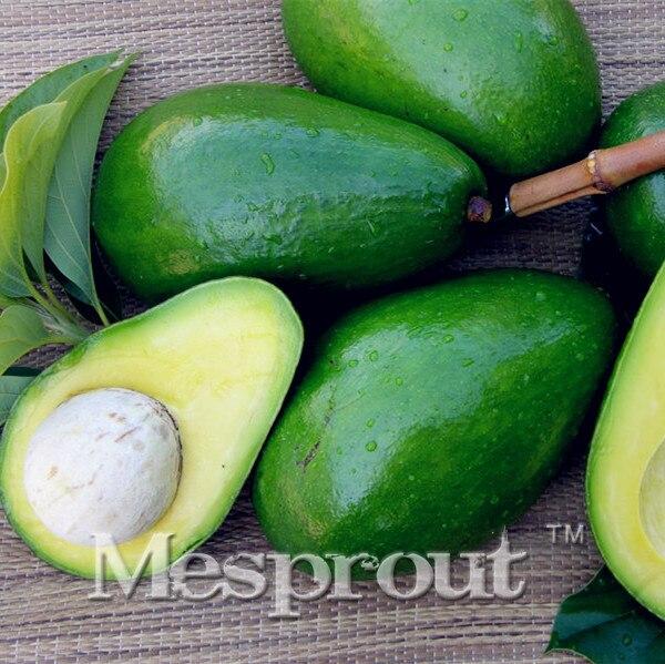 Бесплатная доставка 10 шт. новый редкий зеленый авокадо очень восхитительный Грушевый плод мини-Бонсай легко растущий для дома садовые горшки дерево.