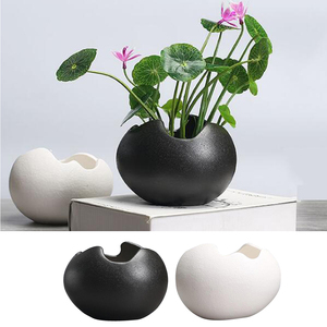 Image 2 - 2x saksı dayanıklı seramik tutucu konteyner çiçekler etli bitki