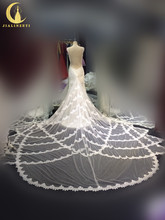 Rhine Real Sample Image Sexy V Neck Lace Appliques Chaple Train Luxurious Bridal Wedding Gown