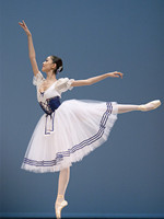 Adult Short Puff Sleeve Giselle Ballet Costume Fairy White Gauze Dress Stage wear Dance Clothes