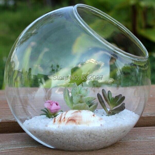 Betty Store Diameter 10cm Side Open Design Glass Ball Terrarium