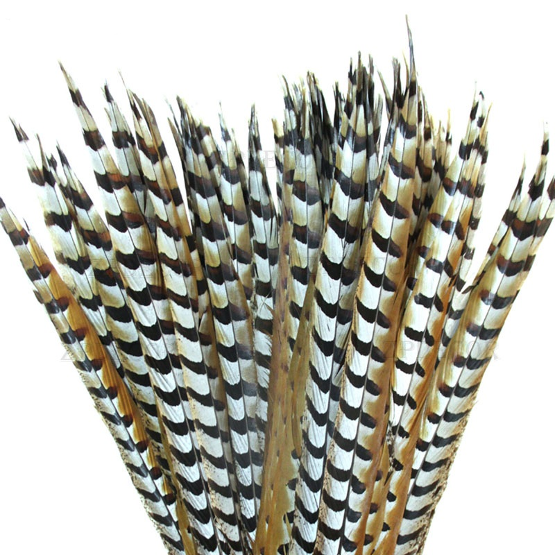 Wholesale of 50 PCS 60-70 CM 24-28 Inch of high quality  Reeves Venery Pheasant Tail Feathers diy decorationWholesale of 50 PCS 60-70 CM 24-28 Inch of high quality  Reeves Venery Pheasant Tail Feathers diy decoration