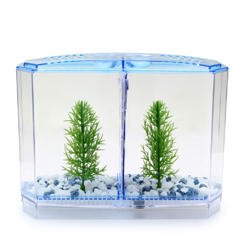 popular fighting fish tanks buy cheap fighting fish tanks