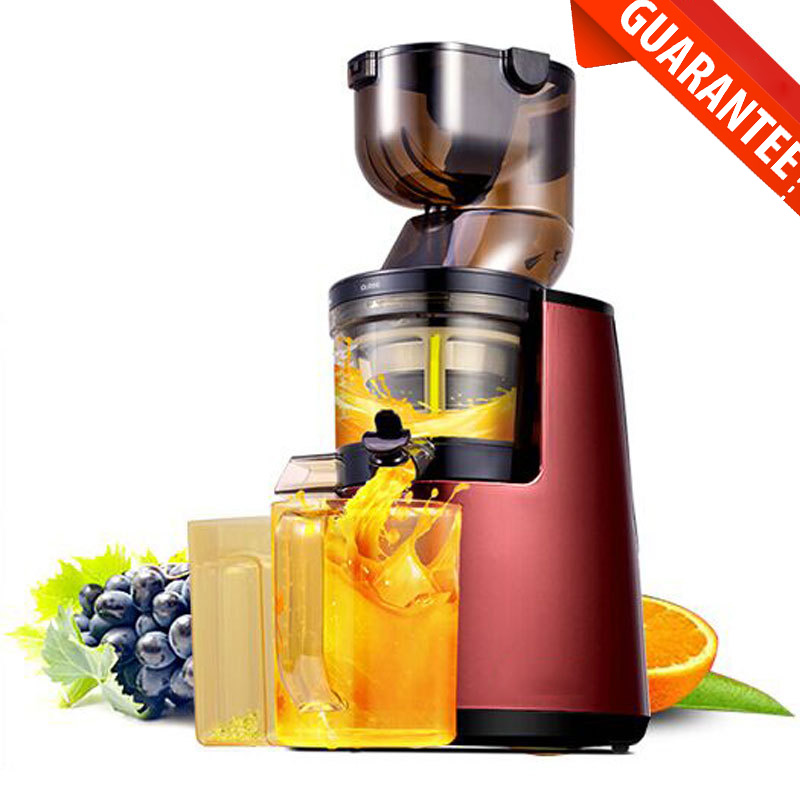 Professional Masticating Slow Juicer : Professional commercial extractor orange juicer top-of-clinics.ru