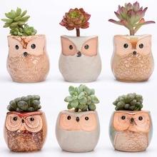 6Pcs/Set Ceramic Flower Pot Owl Shape 2.5 Inch Glaze Base Succulent Cactus Plant Container Planter Bonsai Pots
