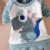 Dinosaur Kids Ropa niños Niñas Ropa de Bebé Niño niño Ropa para Niños Boutique Ropa Para Niños Trajes 2016 Otoño