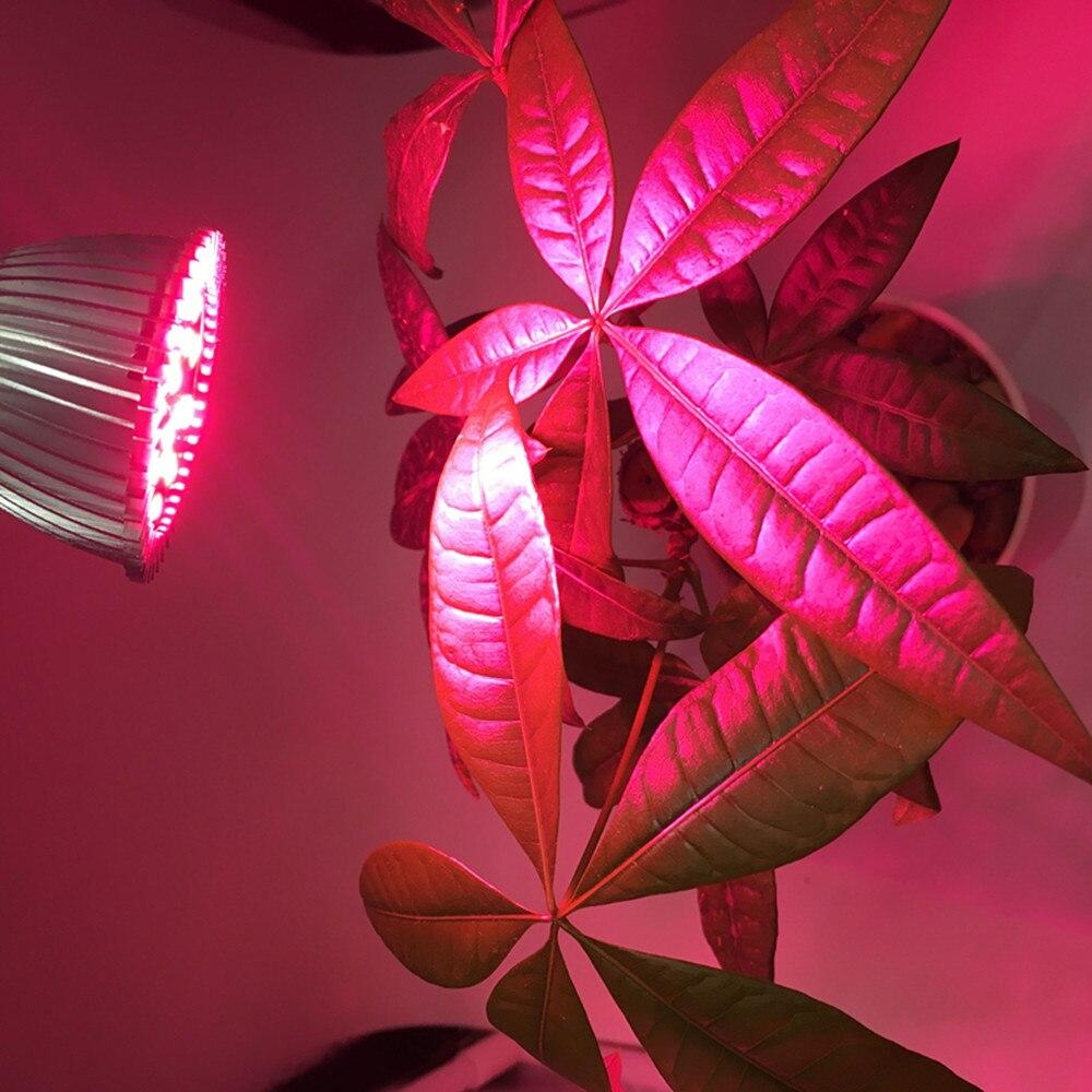 Levou Crescer Luzes espectro completo levou cresce a Working Temperature : -40 Degree to 60 Degree