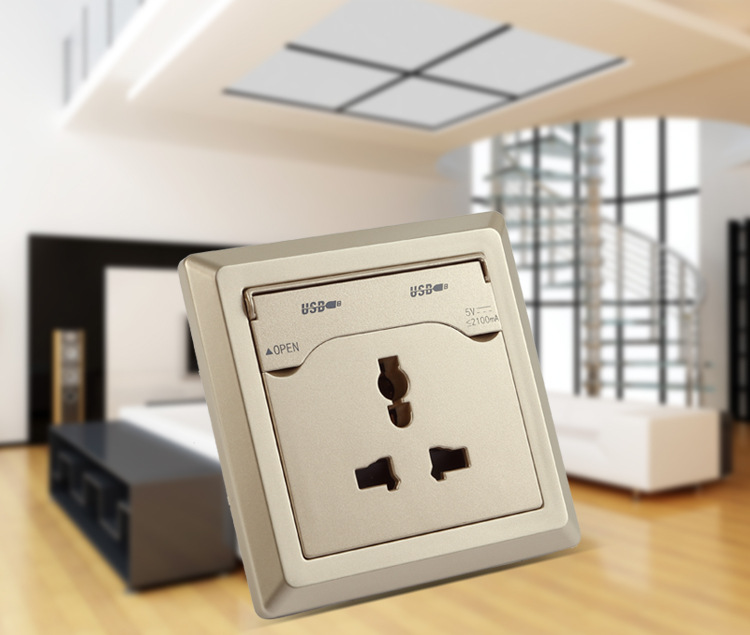 This Placesetting Is To Die Gold Charger Champagne: Universal Champagne Gold AC 110 250V Dual USB Wall Socket