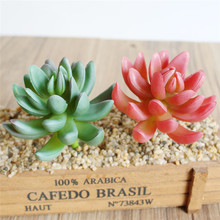 Artificial Succulents Landscape Green Cactus Floral Plant Wedding Office Christmas Party Ornament For Home Garden Decor