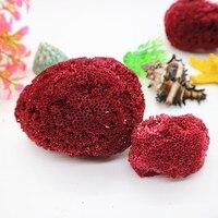 Red White Coral craft deco aquarium Scenery Mediterranean Arrangement of Natural Sea Conch Shells