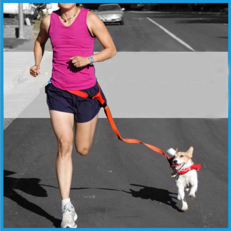 Outdoor Adjustable Hands Free Waist Running Bag Walking Jogging Dog Waist Leash Traction Pet Rope Chain