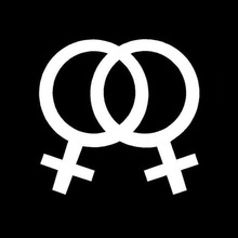 Vinyl Black/Silver Lesbian Flag Stylish Car Stickers