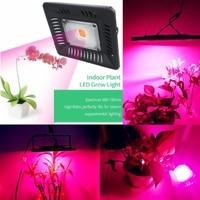 Waterproof IP67 LED Grow Light 50W COB Full Spectrum Plant Growth Lamp 110V/220V for Flowering Plant Grow Box Hydroponic Light