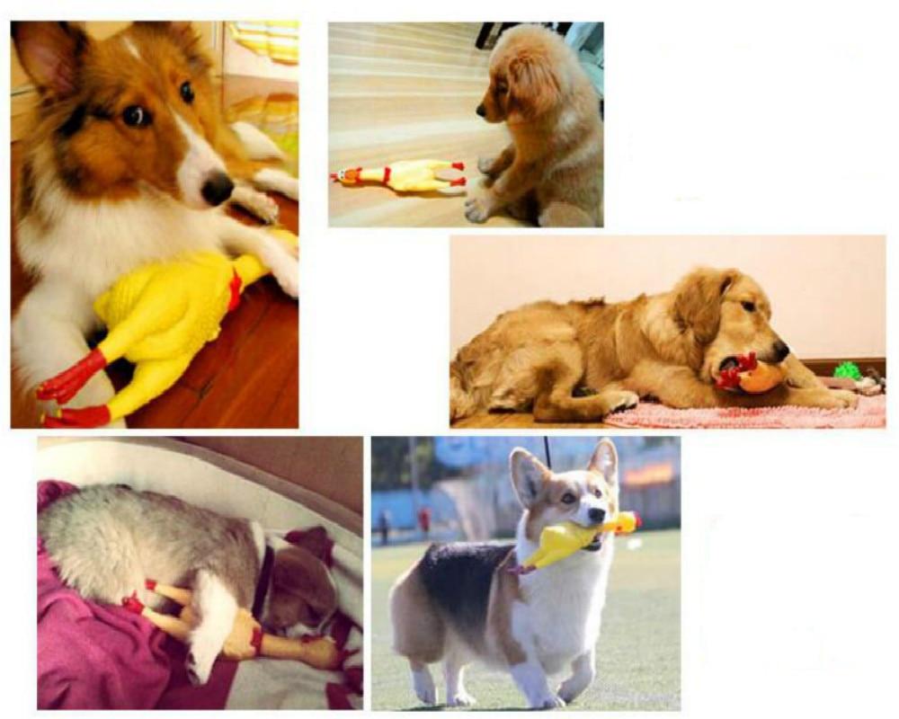 Новинка 17 см игрушки для собак желтая кричащая резиновая курица пищалка для домашних животных жевательный подарок-2