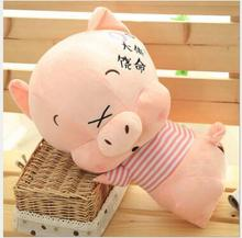 WYZHY New Year Gift Mascot Couple Pigs Plush Toy Pillows for Children Friends  40cm