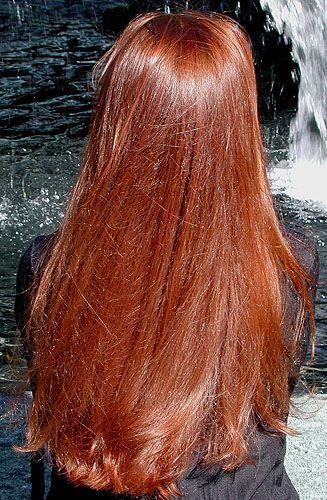 Bonne qualité 100% Pure poudre de henné naturel 2kg pour le soin des cheveux et la coloration offre de noël livraison gratuite - 2