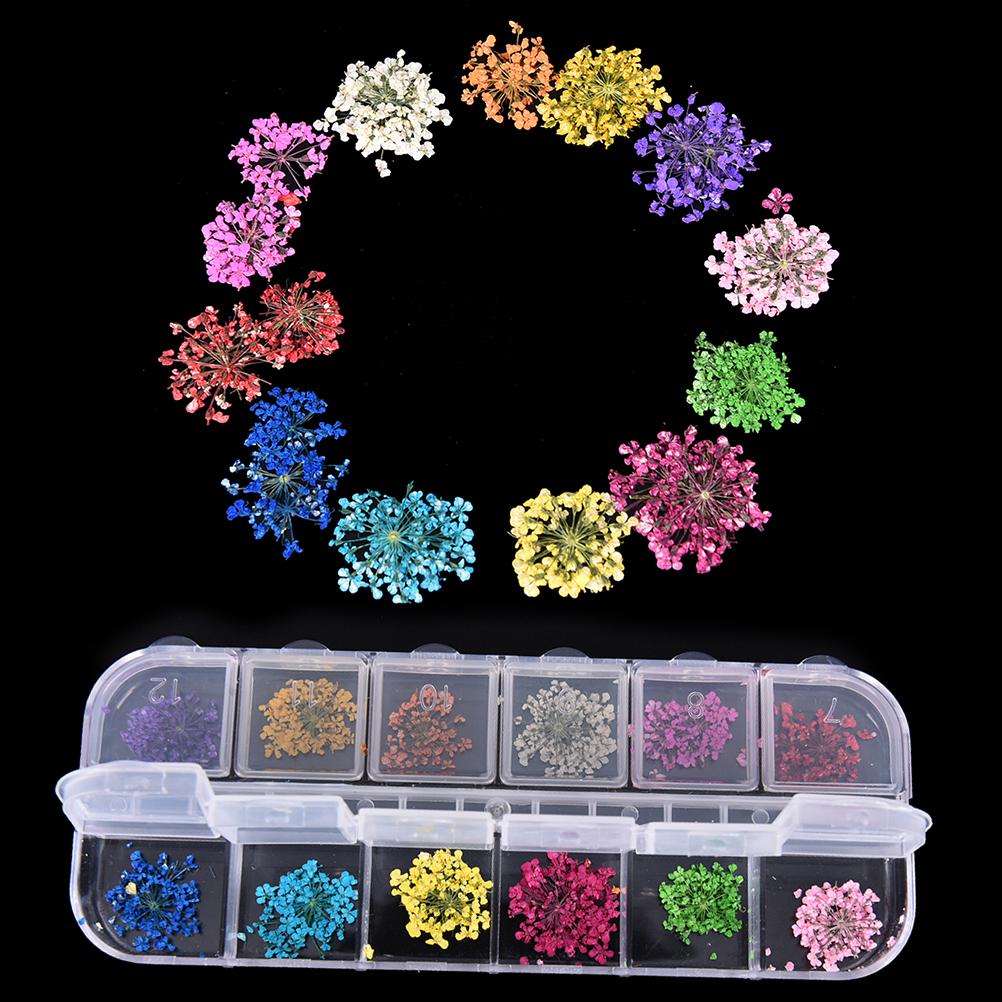 Preis auf Normal Nails Vergleichen - Online Shopping / Buy Low Price ...
