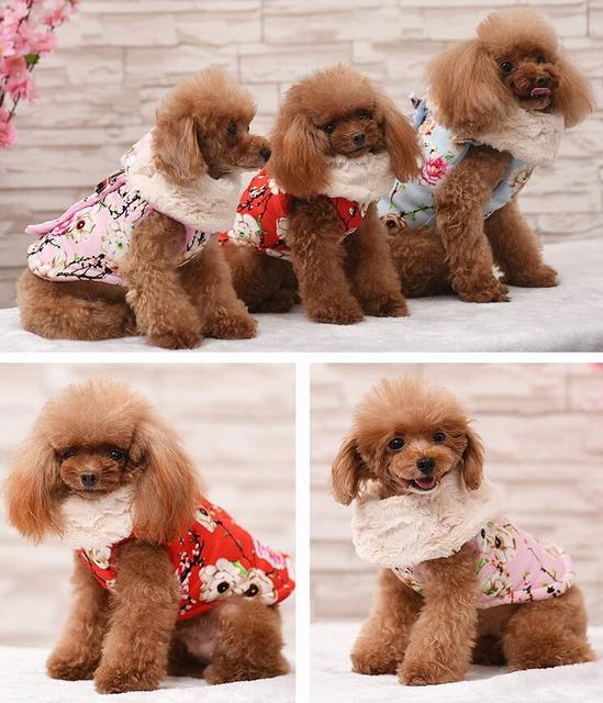 Various Luxury Winter Dog Coat Warm Princess Pet Dog Dress Coat Pet Overalls Winter Dog Clothes Clothing for Small Dog Pet