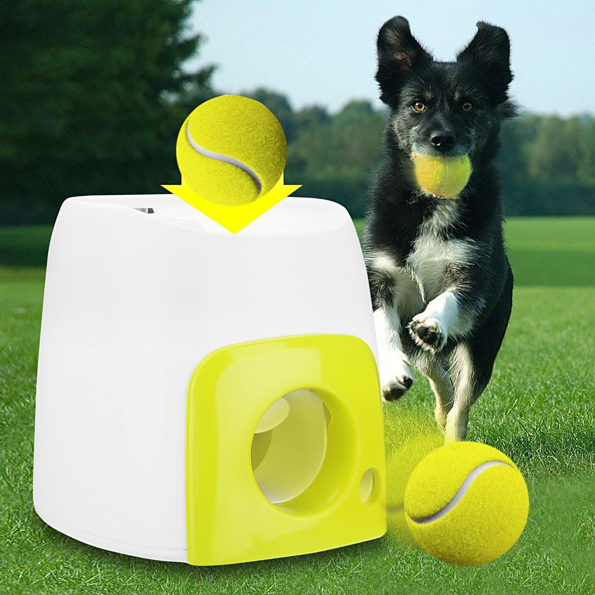 jouets pour animaux de compagnie lanceur de Tennis