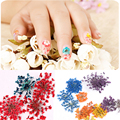 High Quality Dried Flower 3D Nail Art Decal Dry Flowers With Case Manicure Decorations Tools Manicure Nail Accessory Wholesale
