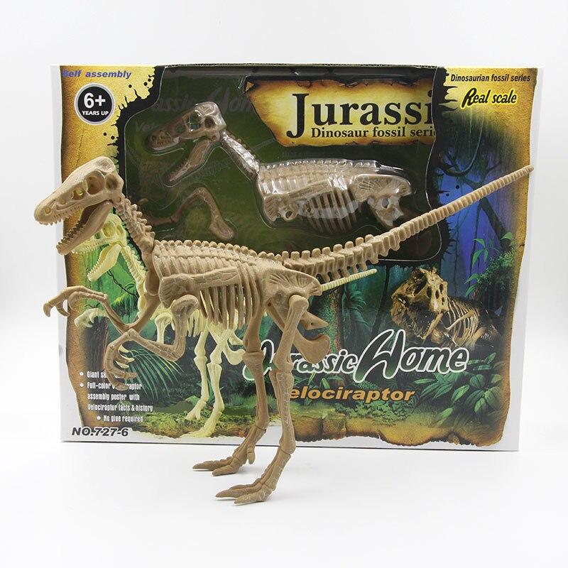Grande Taille 4D Assemblé Raptor Dinosaure Modèle 50 cm