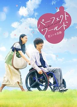 《完美世界》2018年日本剧情,爱情电影在线观看