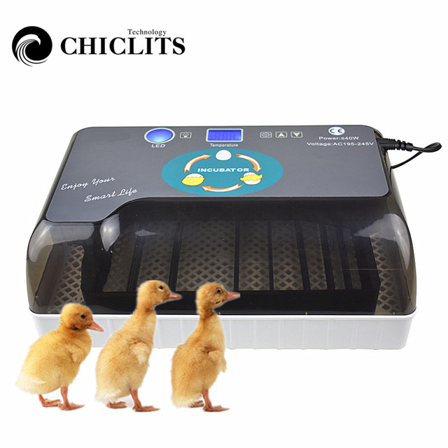 Digital Egg incubator,  Hatcher - Large 12 eggs incubators For Chicken Duck Poultry Quail Eggs 1